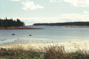 Black Duck Cove